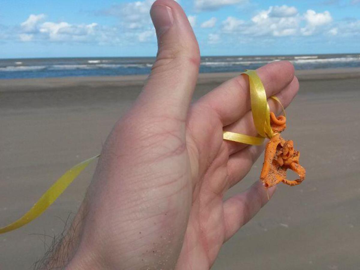 Ballonnetje van Koningsdag of WK?  Vandaag, 25 juni, spoelden er 18 aan uit Noordzee op 100m strand @DieBallon