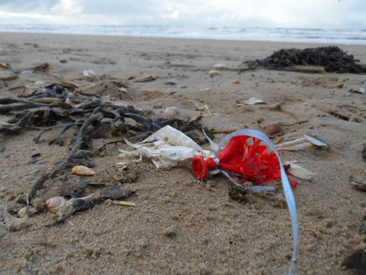 Februari 2015, ballonresten  op het strand van Noordwijk, foto Femke Soulhouse