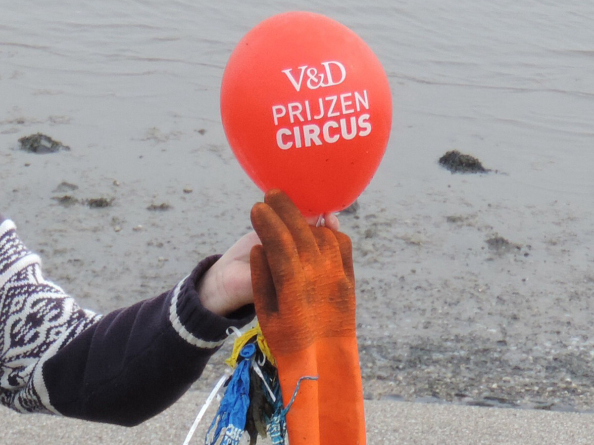 Gevonden op het strand van Texel. najaar 2013, foto Ria van Baaren